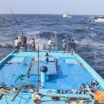 Nachhaltige Fischerei wirkt