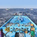 Nachhaltige Fischerei im Indischen Ozean