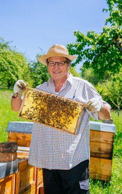 Imker präsentiert eine Wabe mit Bienen
