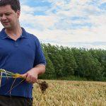 Der Landwirt mit Getreide in der Hand