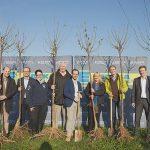In Heddesheim fand 2017 ein Teil der Baumpflanz-Aktion statt