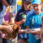 Kinder füttern das Huhn aus der Hand