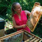 Katharina Schmidt prüft die Bienenwabe über dem Bienenstock