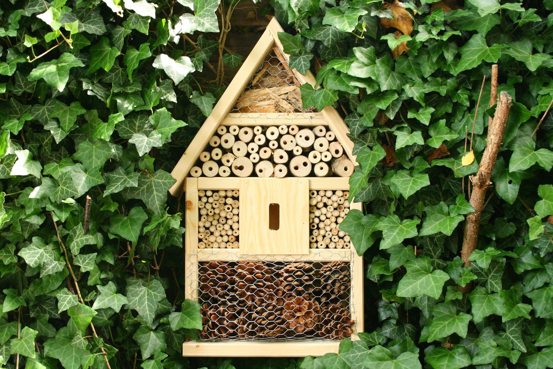 Image correspondant à l'aternative Hôtel à insecte du commerce