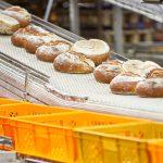 Die gebackenen K&U Gründerbrote kommen auf dem Fließband aus dem Ofen