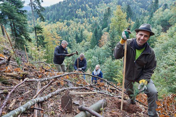 Meinrad Baumann, Bürgermeister von Bad Peterstal-Griesbach, bei der Baumpflanzaktion.